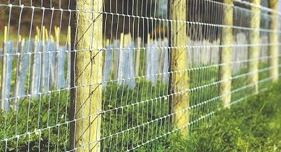 agricultural-stock-fencing-image-for-field-edging-or-livestock-containment