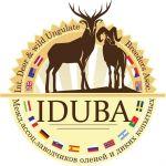 iduba-logo